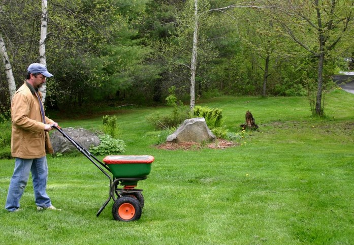How you can Conserve Period as well as Cash Whenever Mowing and trimming the actual Yard