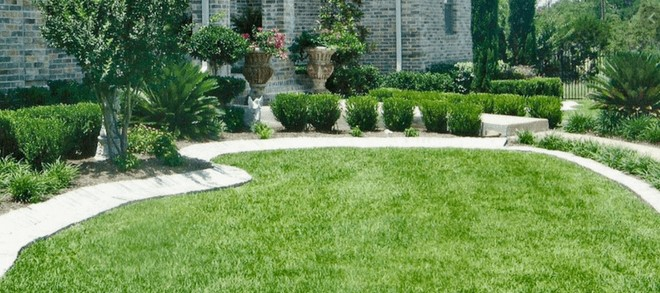 Safeguard Your own Front yard Through Water damage and mold Just like a Professional